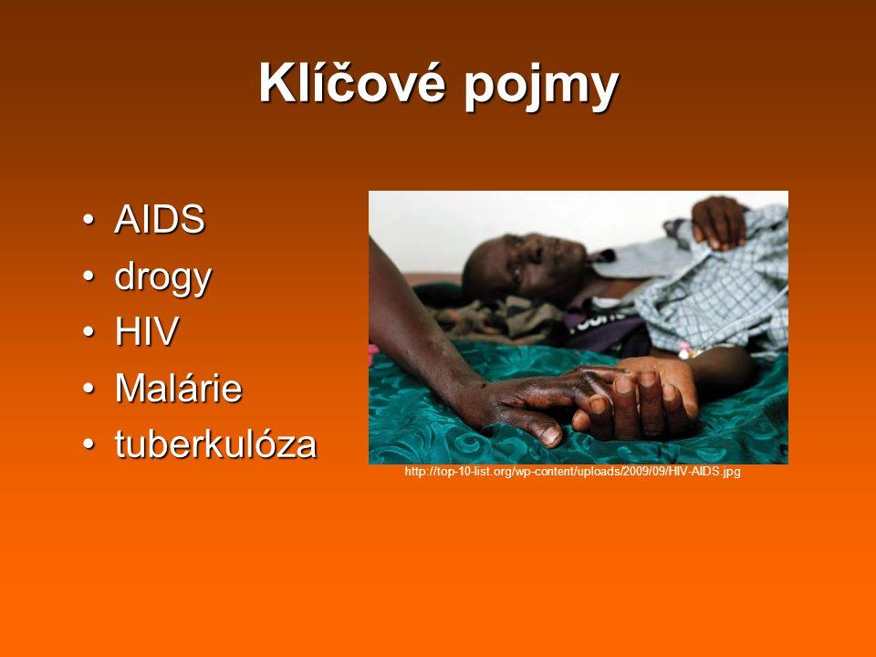 Klíčové pojmy AIDS drogy HIV Malárie tuberkulóza