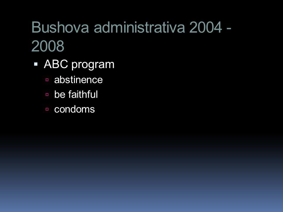 Bushova administrativa 2004 - 2008