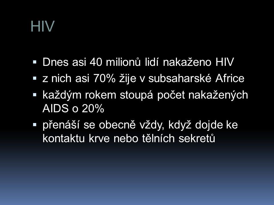 HIV Dnes asi 40 milionů lidí nakaženo HIV