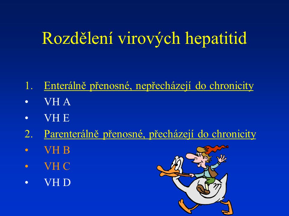 Rozdělení virových hepatitid