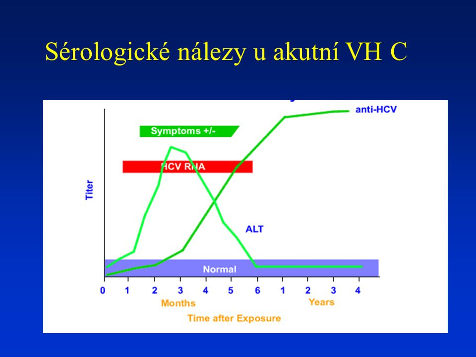 Sérologické nálezy u akutní VH C