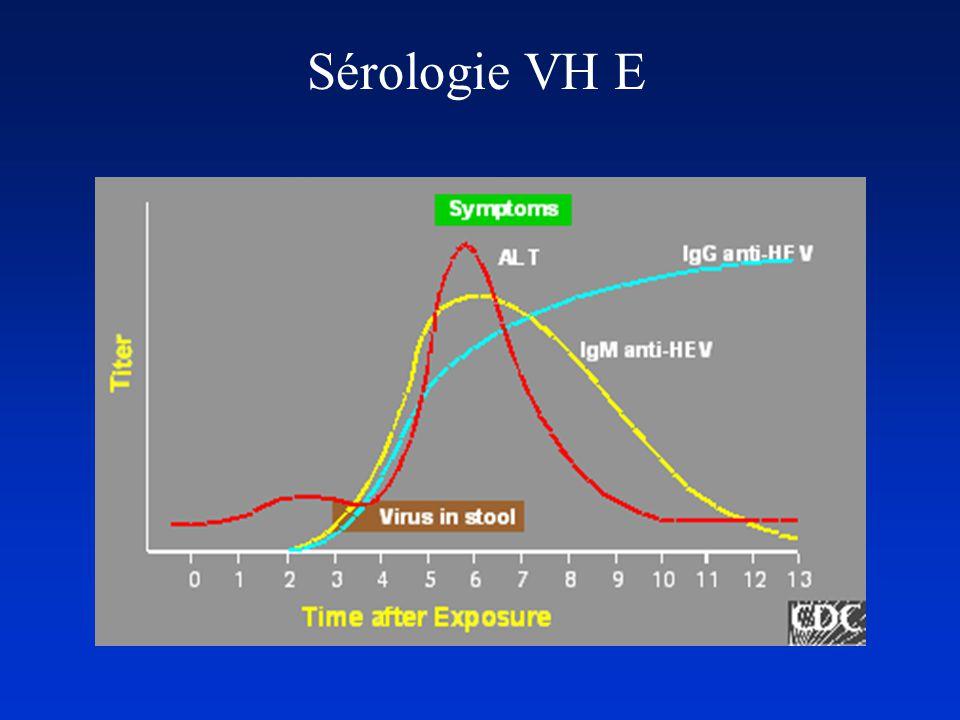 Sérologie VH E