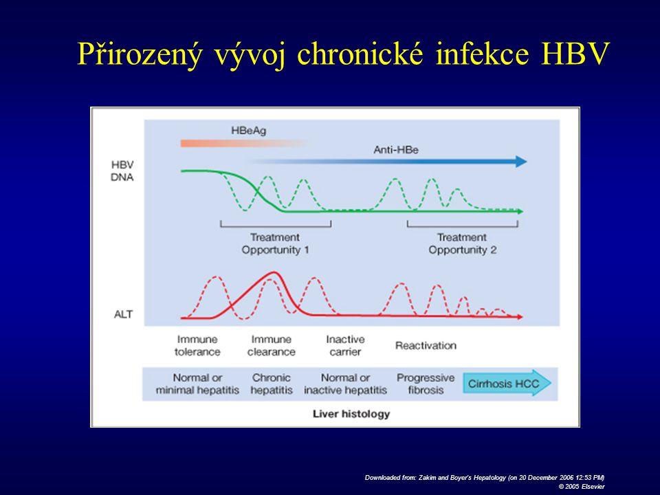Přirozený vývoj chronické infekce HBV
