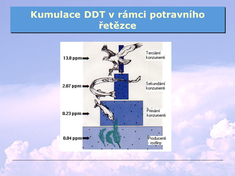 Kumulace DDT v rámci potravního řetězce