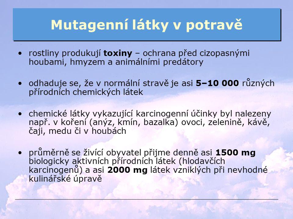 Mutagenní látky v potravě