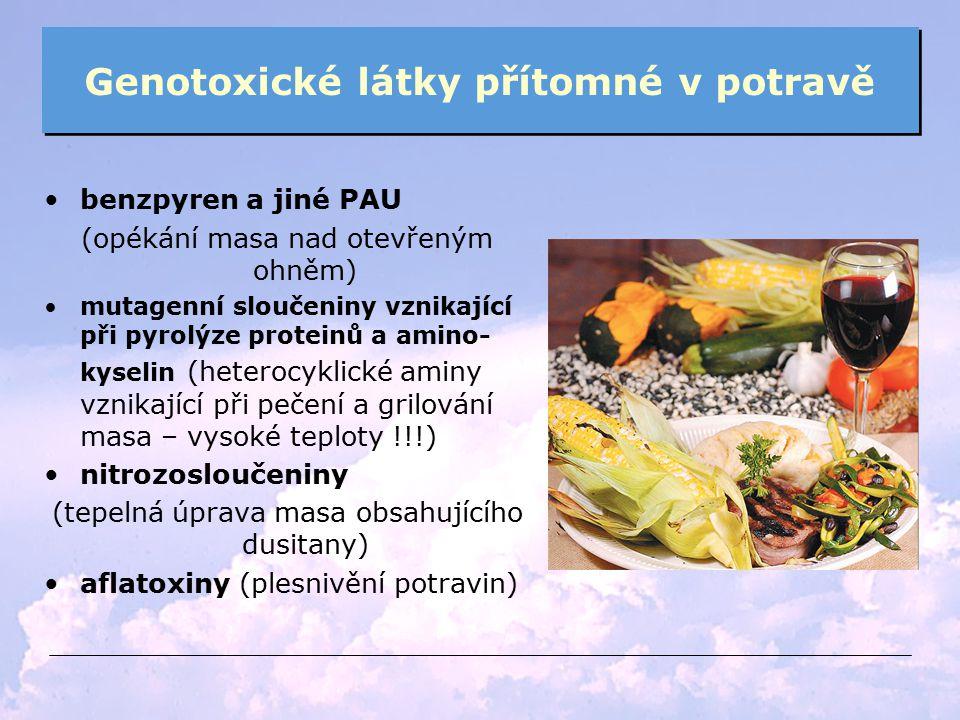 Genotoxické látky přítomné v potravě