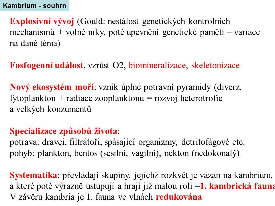 Explosívní vývoj (Gould: nestálost genetických kontrolních