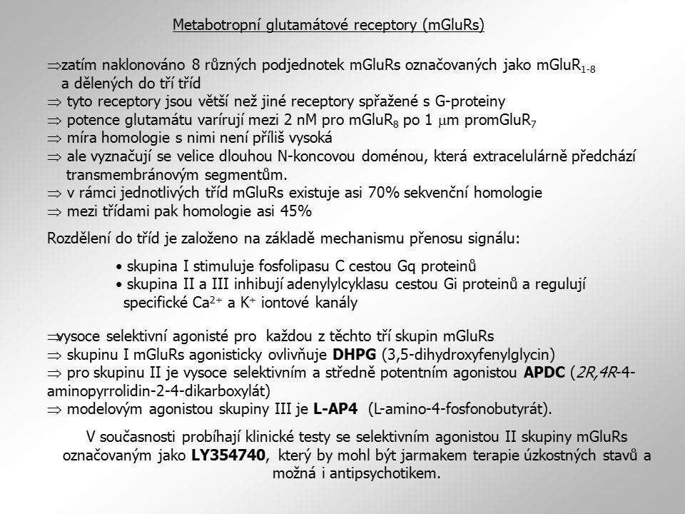 Metabotropní glutamátové receptory (mGluRs)