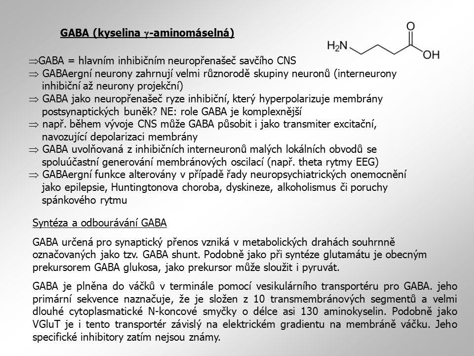 GABA (kyselina g-aminomáselná)