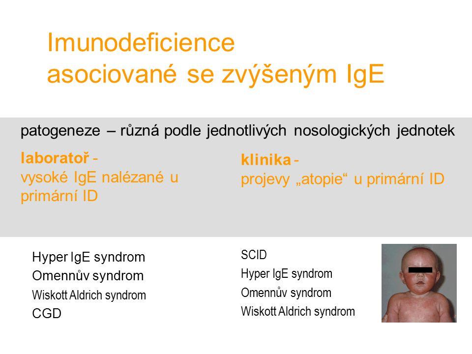 Imunodeficience asociované se zvýšeným IgE