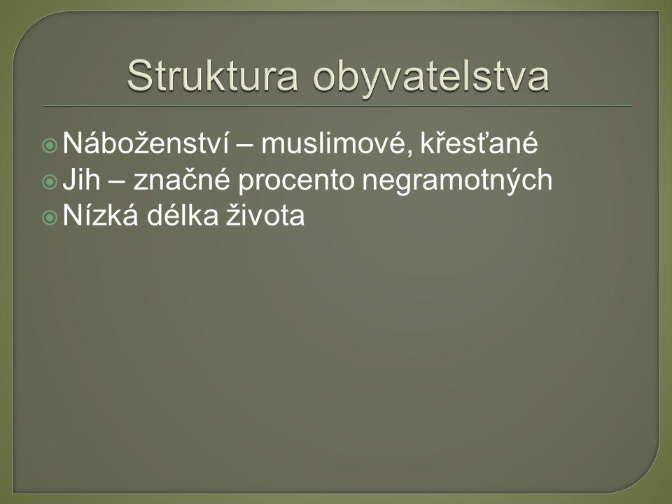 Struktura obyvatelstva