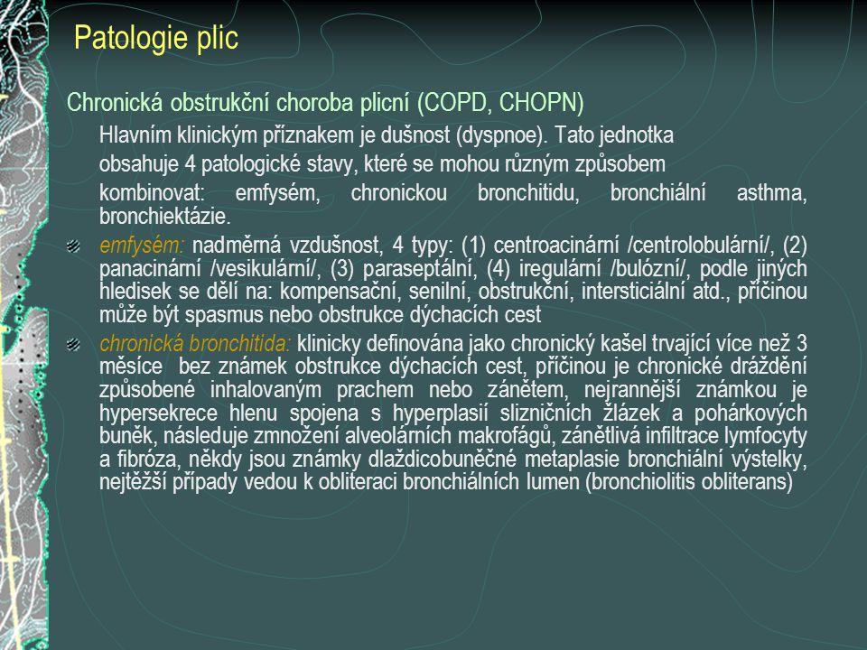 Patologie plic Chronická obstrukční choroba plicní (COPD, CHOPN)