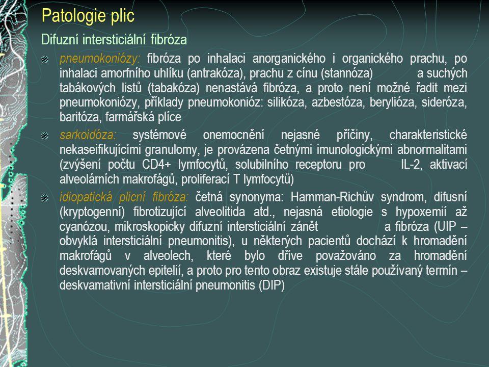 Patologie plic Difuzní intersticiální fibróza