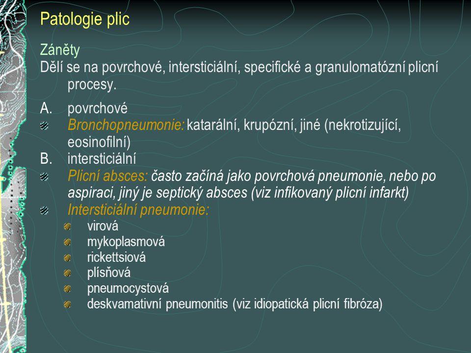 Patologie plic Záněty. Dělí se na povrchové, intersticiální, specifické a granulomatózní plicní procesy.
