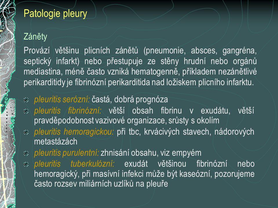 Patologie pleury Záněty