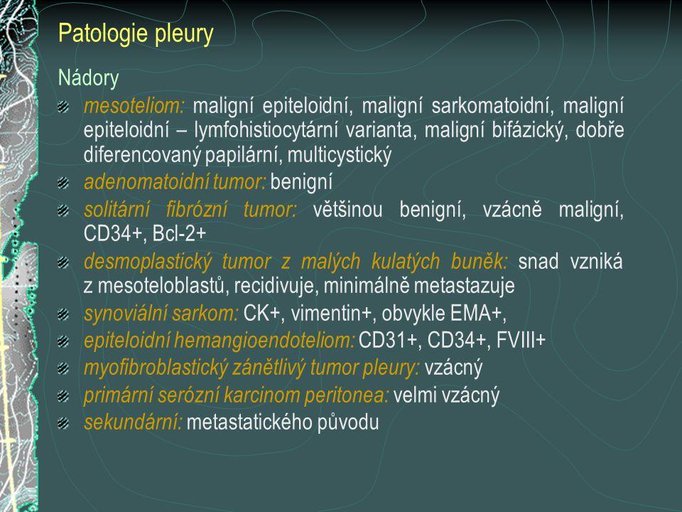 Patologie pleury Nádory