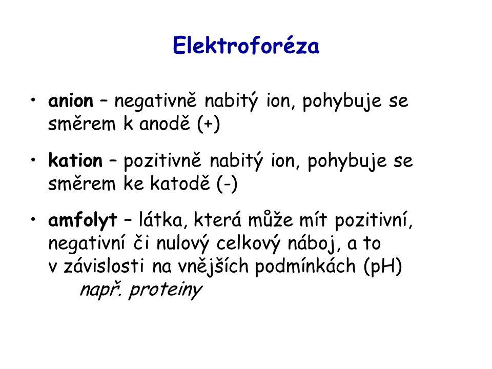 Elektroforéza anion – negativně nabitý ion, pohybuje se směrem k anodě (+) kation – pozitivně nabitý ion, pohybuje se směrem ke katodě (-)