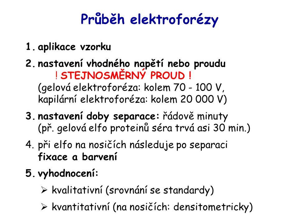 Průběh elektroforézy aplikace vzorku