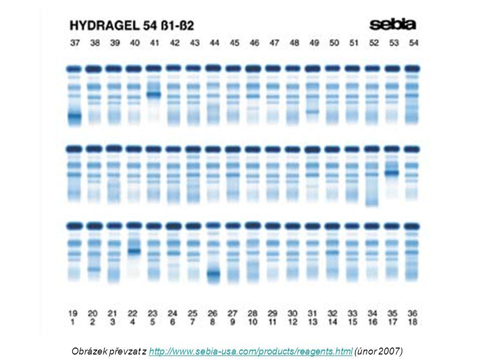 Obrázek převzat z http://www. sebia-usa. com/products/reagents