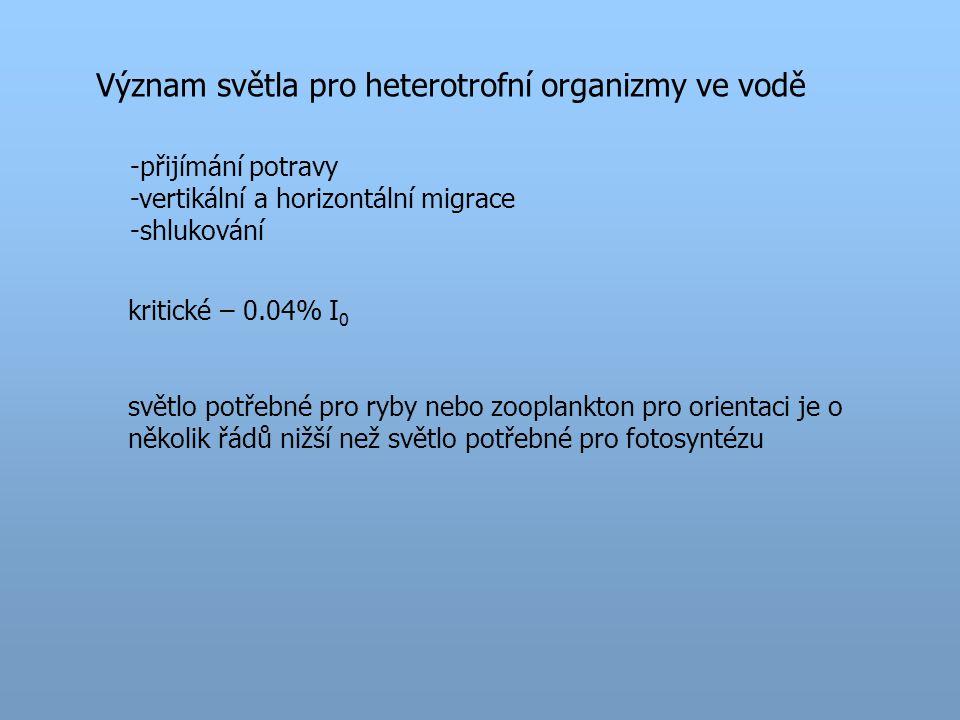 Význam světla pro heterotrofní organizmy ve vodě