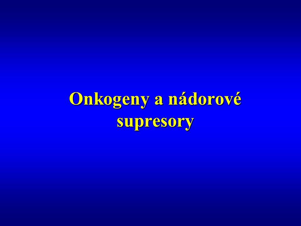 Onkogeny a nádorové supresory