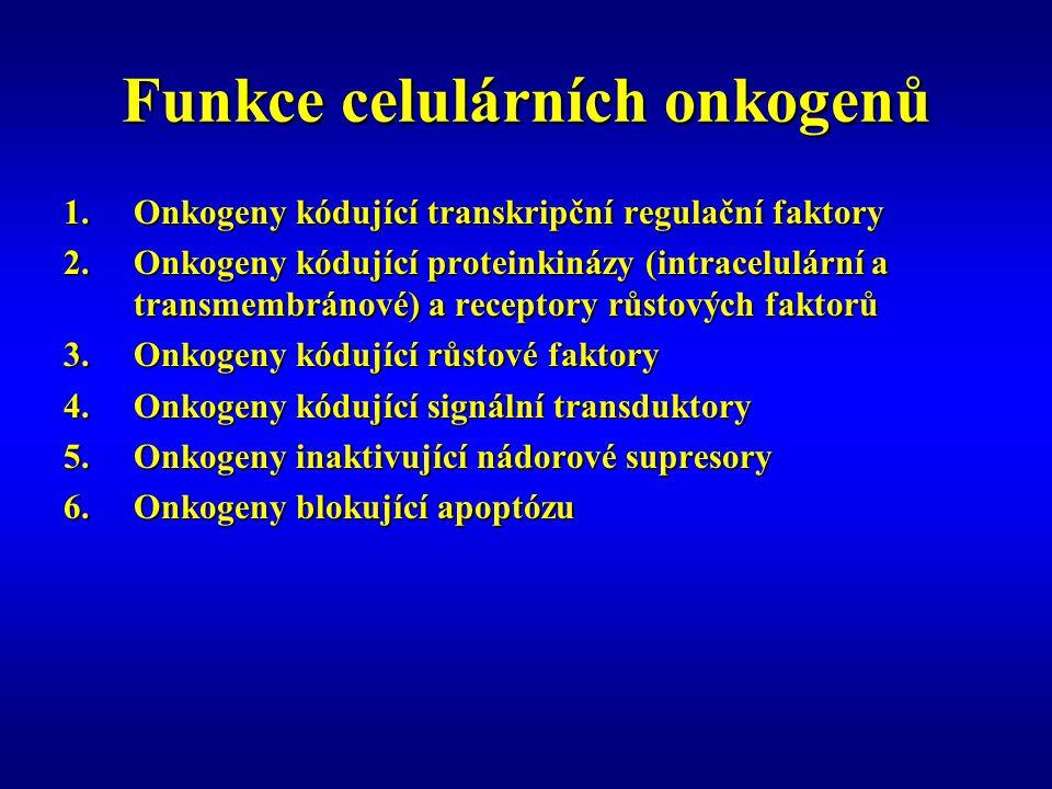 Funkce celulárních onkogenů
