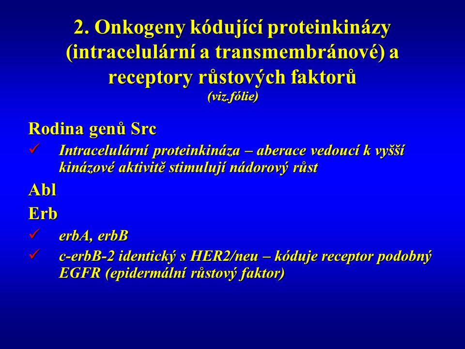 2. Onkogeny kódující proteinkinázy (intracelulární a transmembránové) a receptory růstových faktorů (viz.fólie)