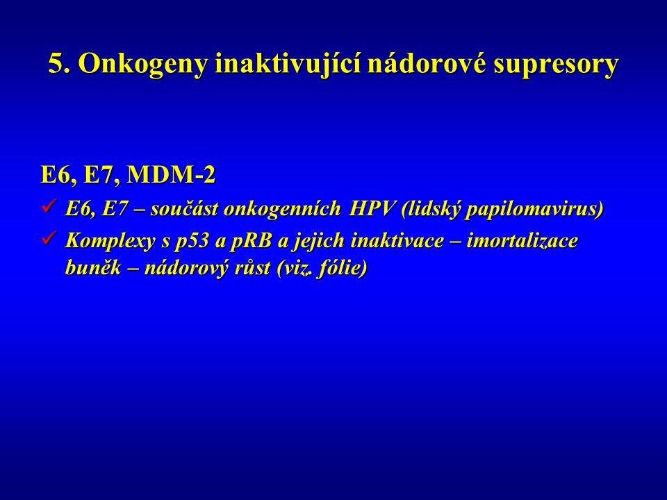 5. Onkogeny inaktivující nádorové supresory