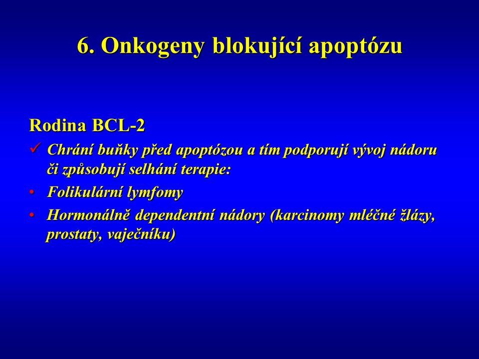 6. Onkogeny blokující apoptózu