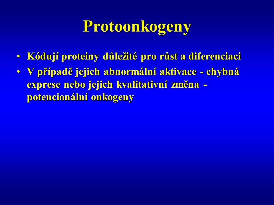 Protoonkogeny Kódují proteiny důležité pro růst a diferenciaci
