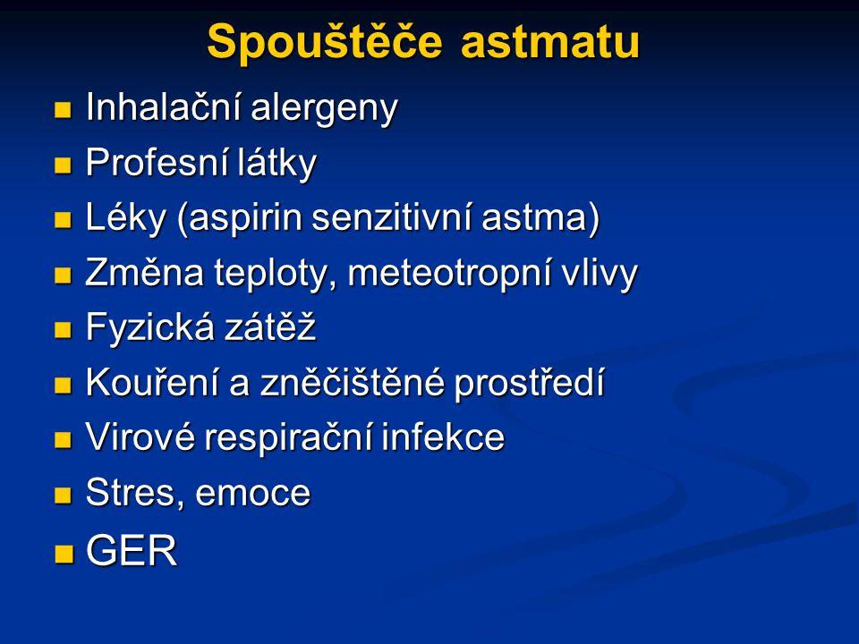 Spouštěče astmatu GER Inhalační alergeny Profesní látky