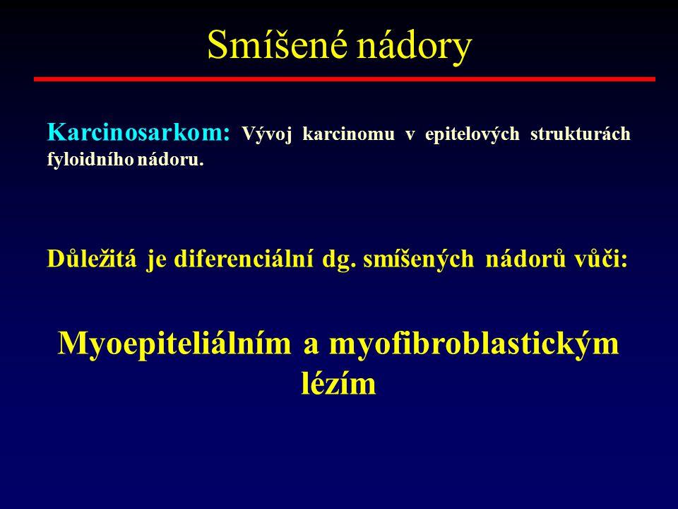 Myoepiteliálním a myofibroblastickým lézím