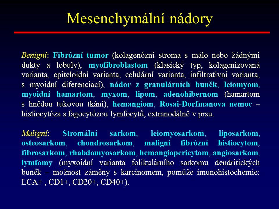 Mesenchymální nádory