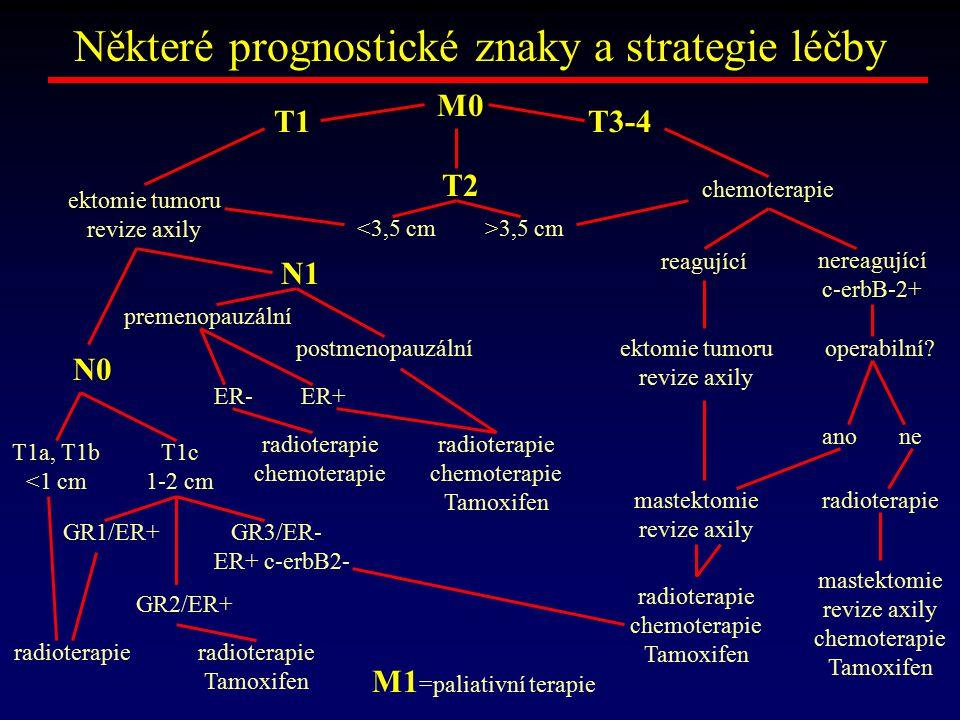 Některé prognostické znaky a strategie léčby