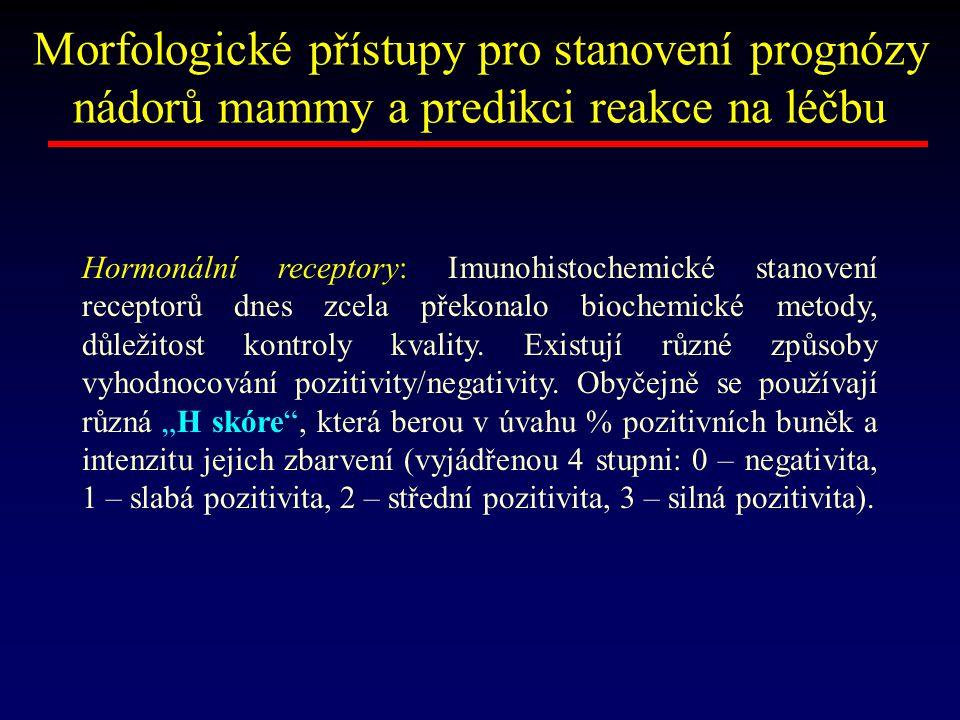 Morfologické přístupy pro stanovení prognózy nádorů mammy a predikci reakce na léčbu