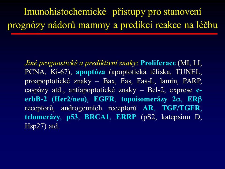 Imunohistochemické přístupy pro stanovení prognózy nádorů mammy a predikci reakce na léčbu