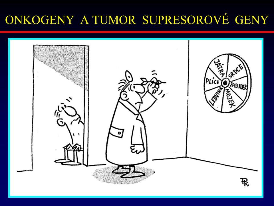 ONKOGENY A TUMOR SUPRESOROVÉ GENY