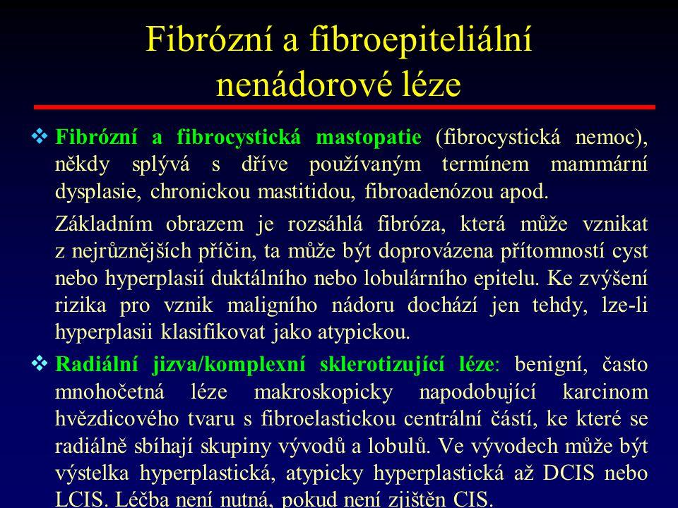 Fibrózní a fibroepiteliální nenádorové léze