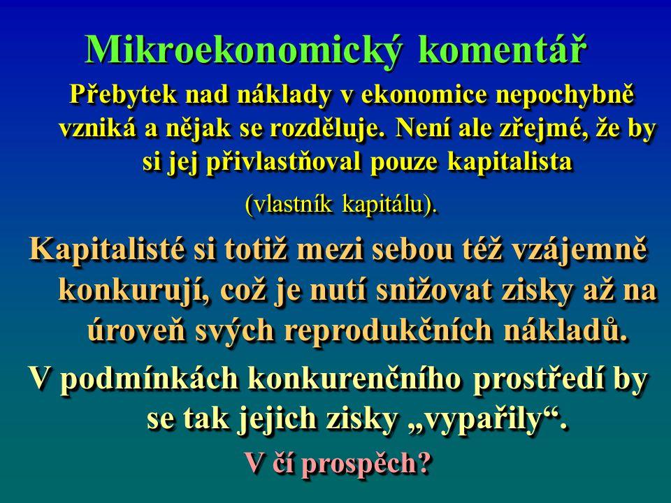 Mikroekonomický komentář