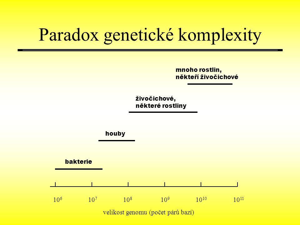 Paradox genetické komplexity