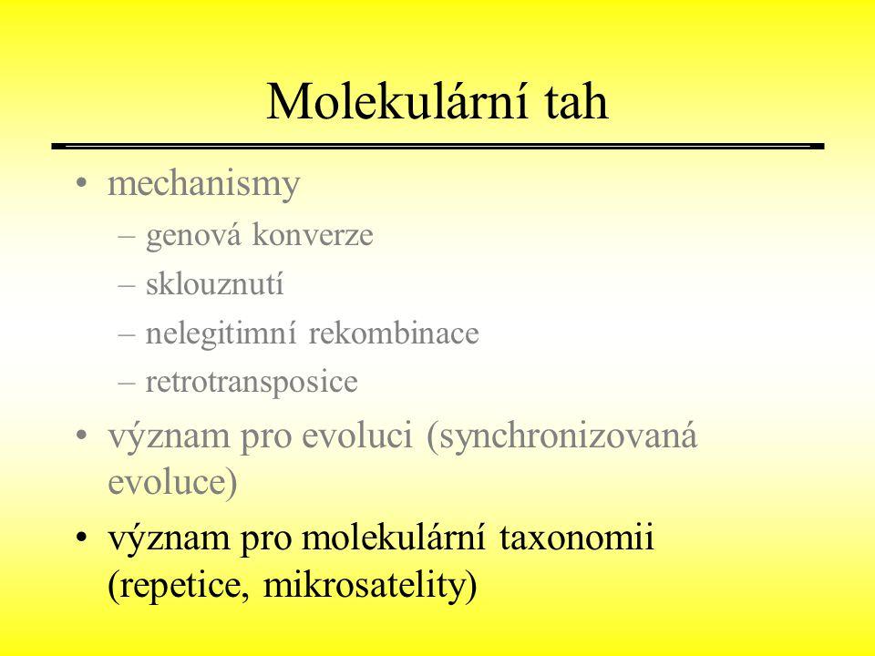 Molekulární tah mechanismy