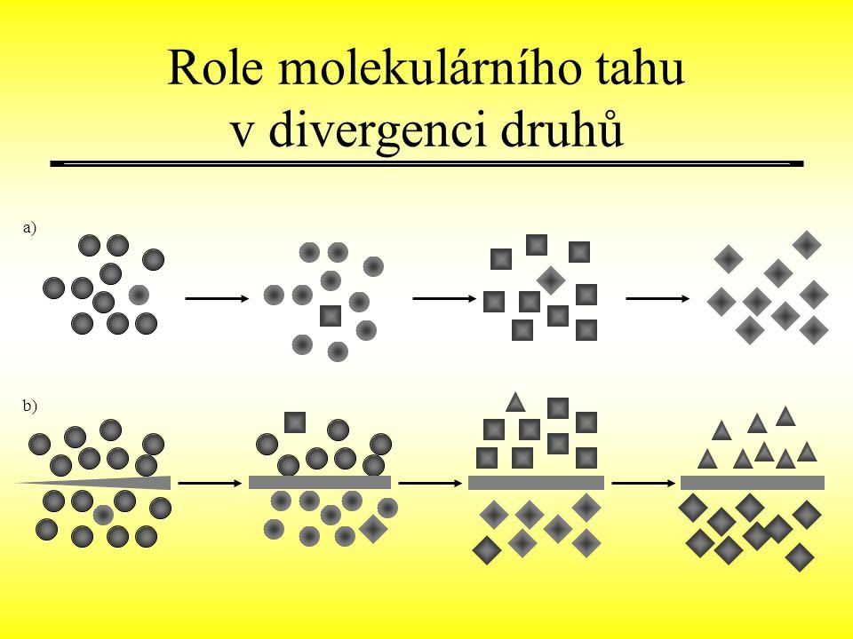 Role molekulárního tahu v divergenci druhů