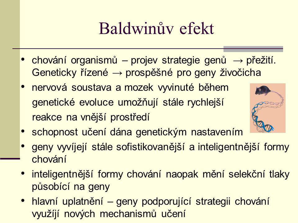 Baldwinův efekt chování organismů – projev strategie genů → přežití. Geneticky řízené → prospěšné pro geny živočicha.