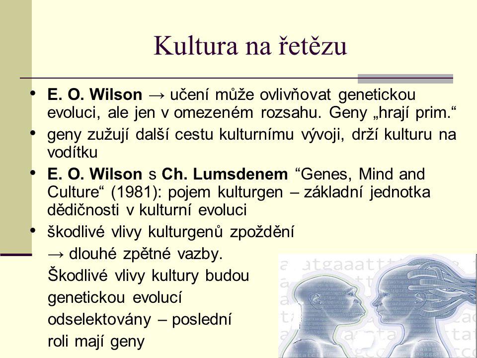 """Kultura na řetězu E. O. Wilson → učení může ovlivňovat genetickou evoluci, ale jen v omezeném rozsahu. Geny """"hrají prim."""