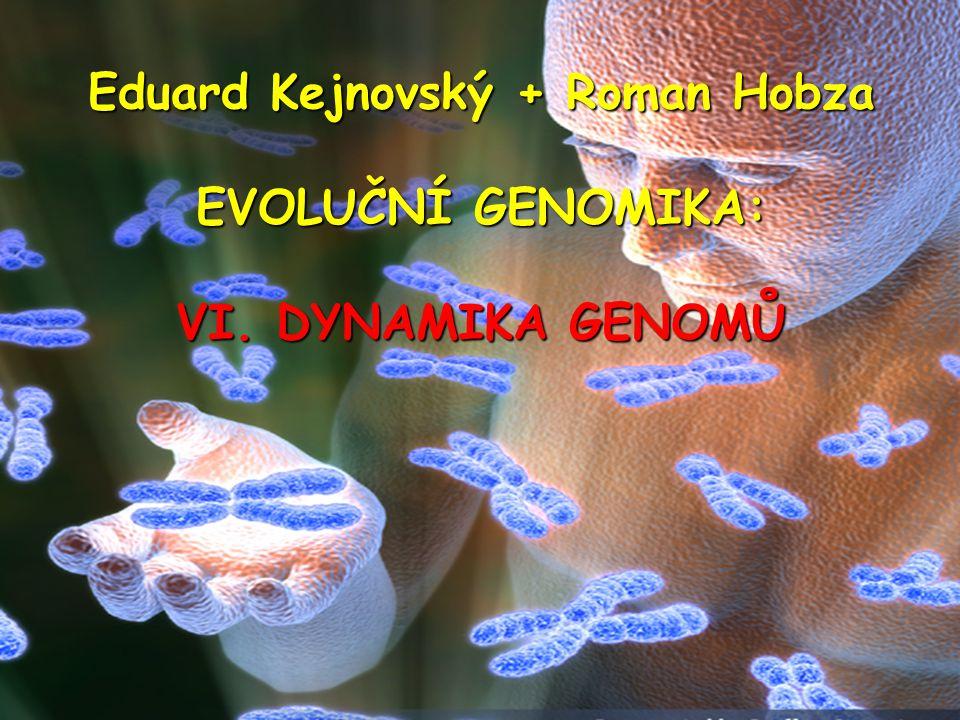 Eduard Kejnovský + Roman Hobza