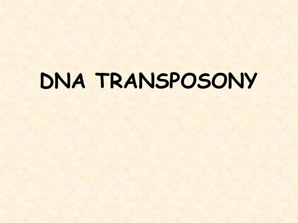 DNA TRANSPOSONY