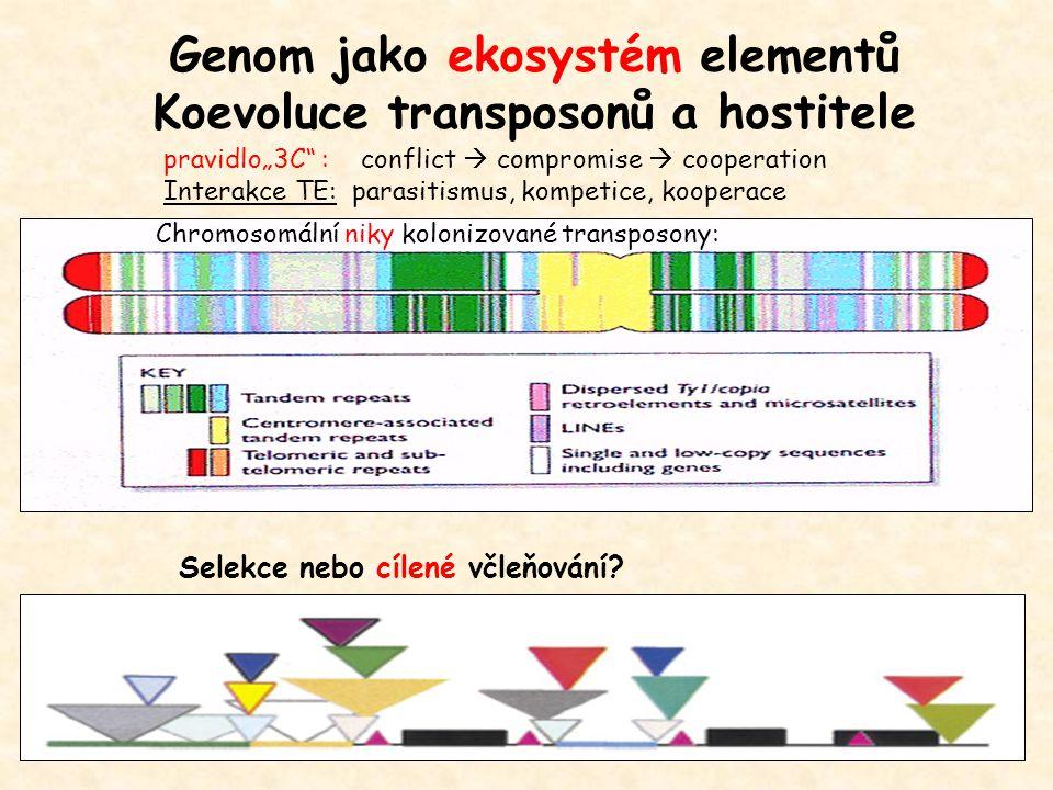 Genom jako ekosystém elementů Koevoluce transposonů a hostitele
