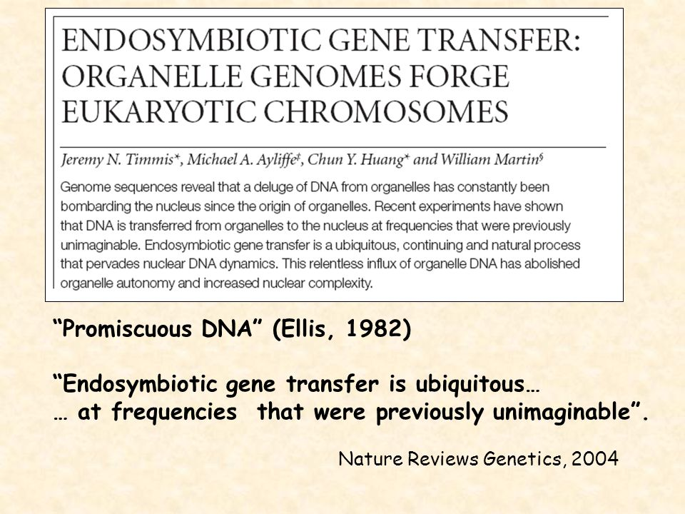 Promiscuous DNA (Ellis, 1982)