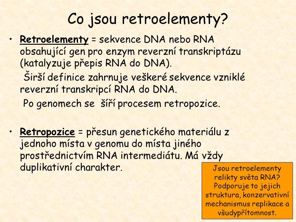 Jsou retroelementy relikty světa RNA