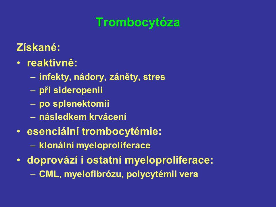 Trombocytóza Získané: reaktivně: esenciální trombocytémie: